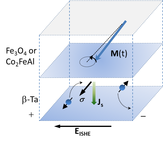 Scheme for a material with strong spinn-electron movement correlation